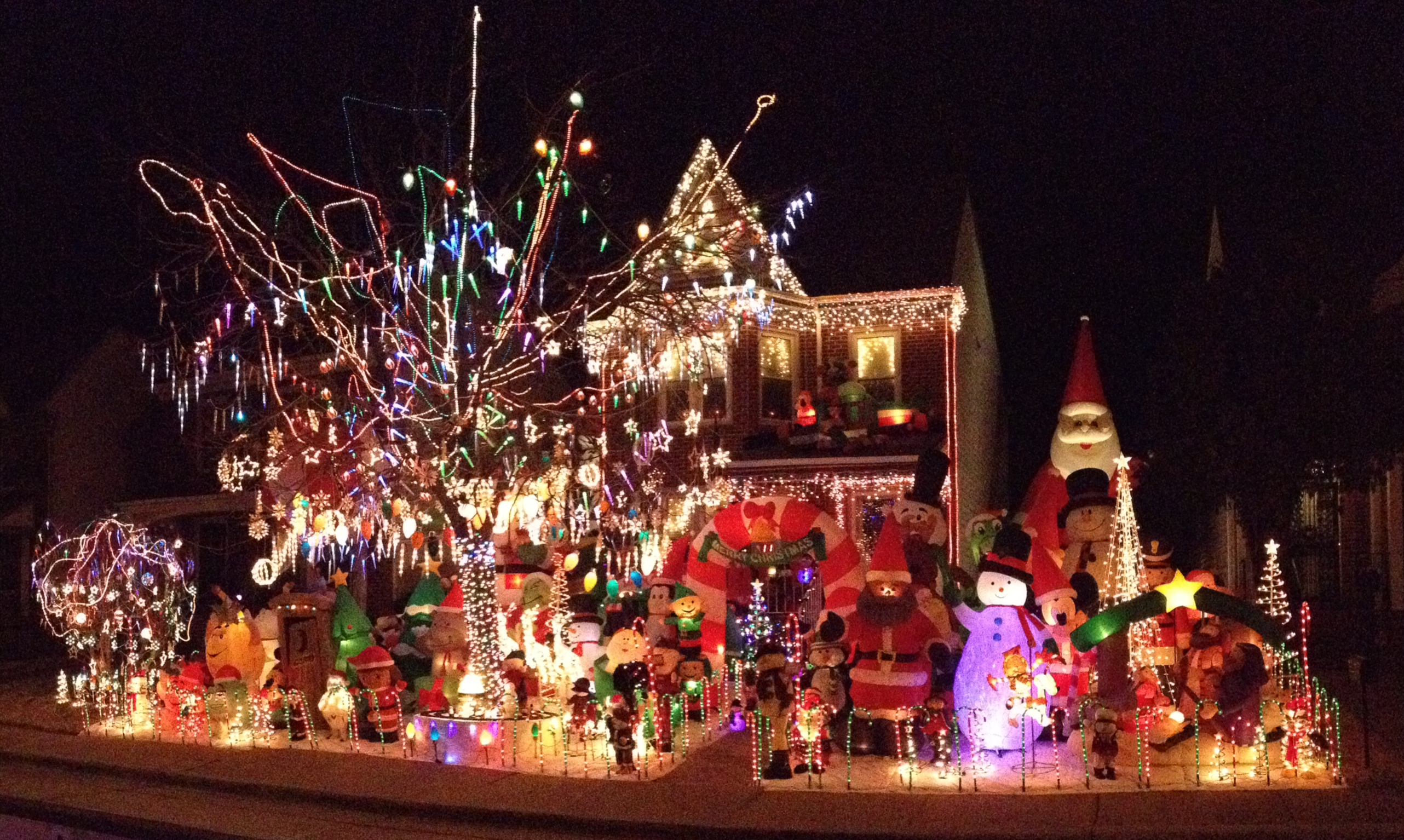 Claiborne Street featured in the Tacky Light Tour